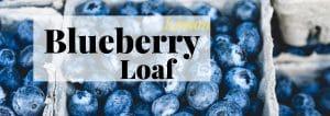 Lemon blueberry loaf banner